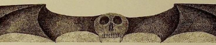 cropped-dracula-bat.jpg